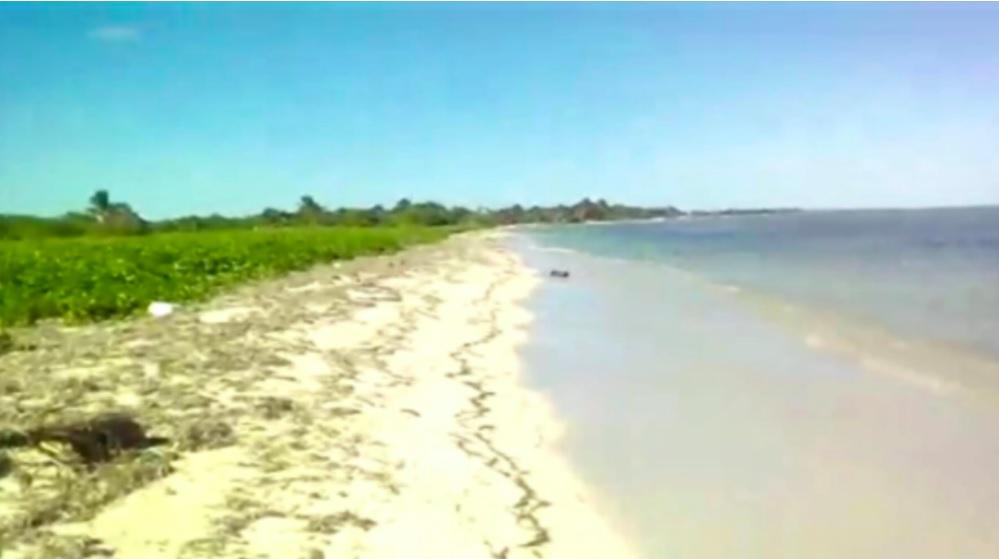 Mahahual beachfront land