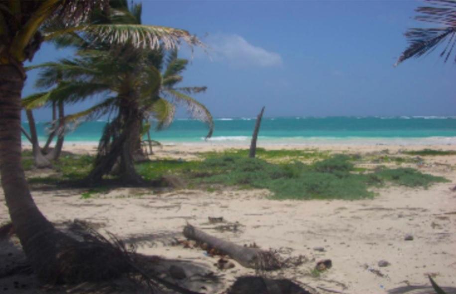 Ocean front land in Mahahual