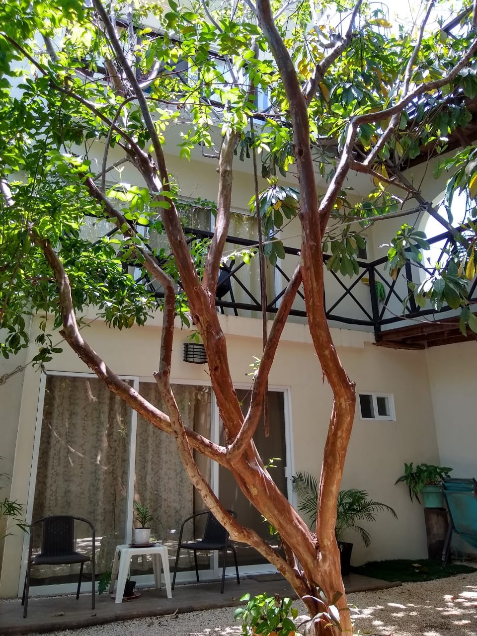 Investment opportunity in charming 6 condos surrounded by nature