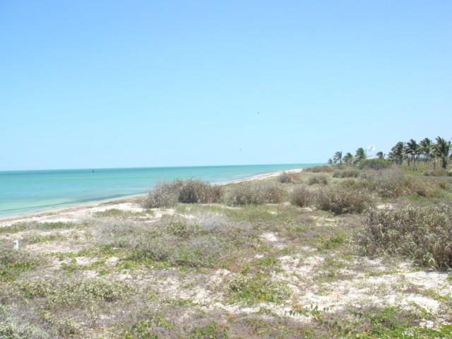 Bargain Mexican beach Real Estate
